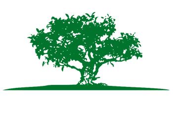 siedenschnur garten und landschaftsbau wedendorf - Garten Und Landschaftsbau